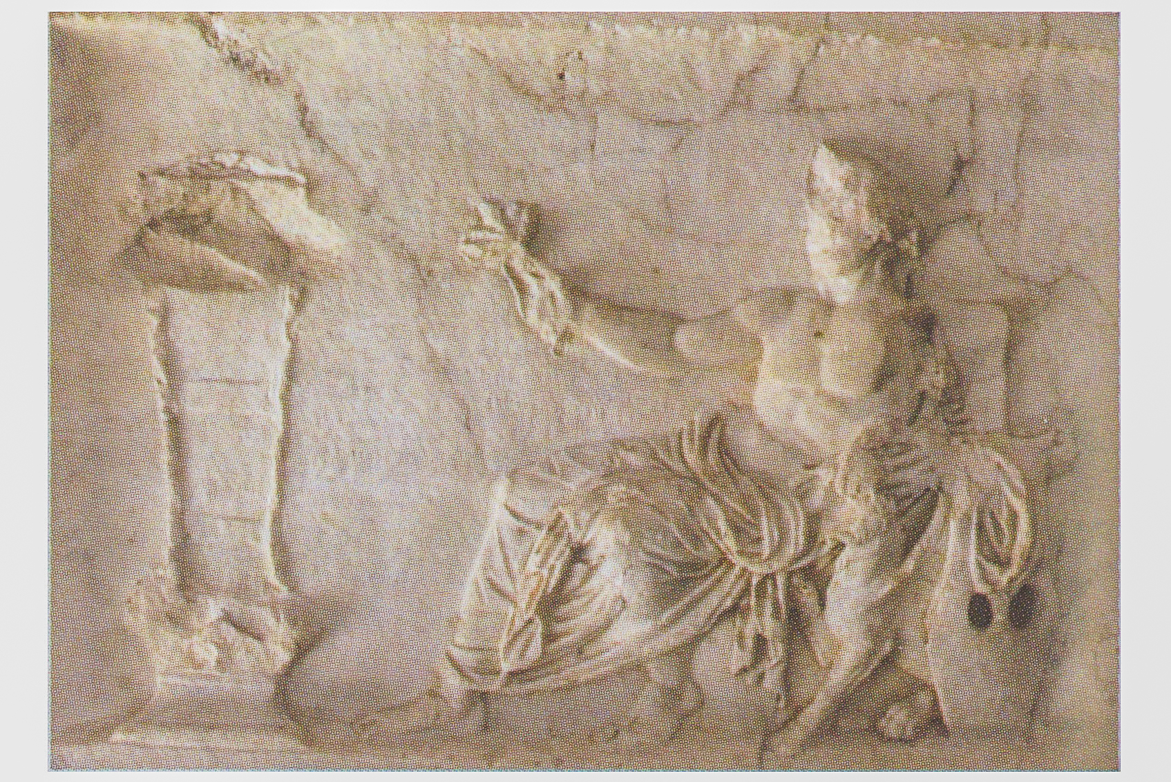 Apollon se penche sur ça cithare